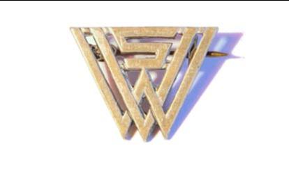 WVS Monogram Brooch.png